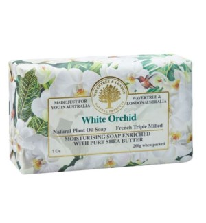 SOAP/White Orchid