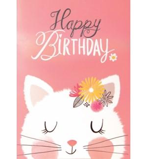 CBD/Little Kitten Birthday