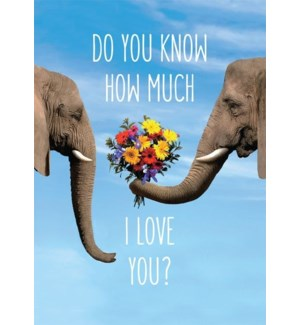 RO/Elephant Giving Flowers