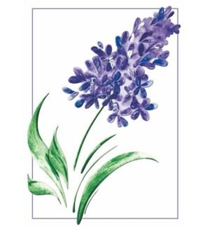 EN/Watercolor Lilac