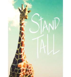 EN/Stand Tall