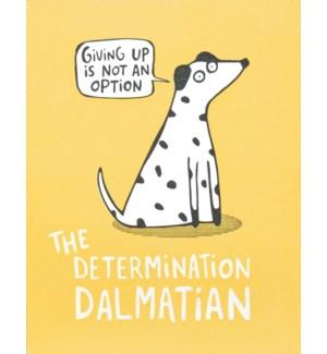 EN/Determination Dalmation