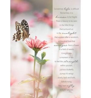 EN/Alighting Butterfly