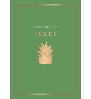 TH/Sometimes Life Succs