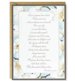 WD/Scripture -White Orchids