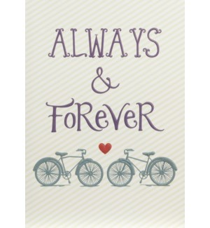 AN/Always And Forever Bikes