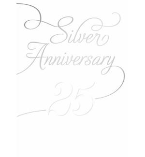 AN/Silver Anniversary
