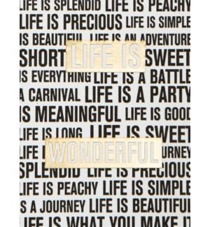 ED/Life Is Wonderful