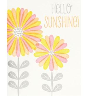 ED/Hello Sunshine