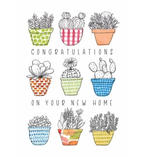 NH/New Home Potted Plants