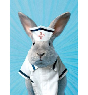 NURSE/Nurse Rabbit