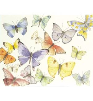 NOTES/BLANK Butterflies