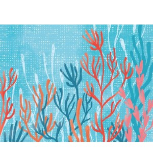 NOTES/Coral Tranquility