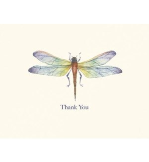 NOTES/TY Dragonfly
