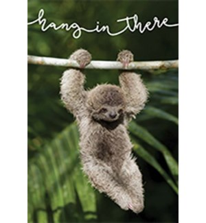 MAG/Hang In There Sloth