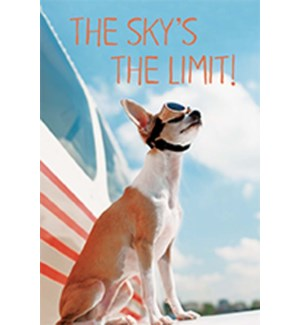 MAG/Skys The Limit Dog