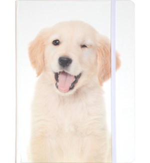 JOURNAL/Puppy Wink
