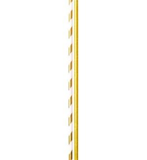 STRAWS/Solid Stripe Gold Foil