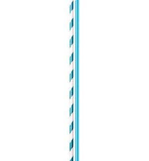 STRAWS/Solid Stripe Teal Foil