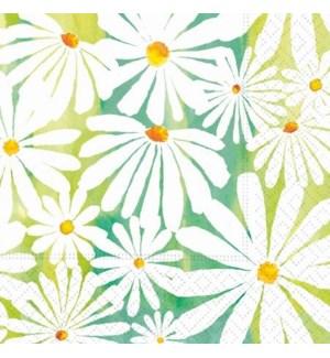 NAPKIN/Daisy Garden Bev