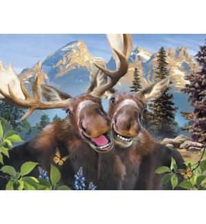 AN/Pair of moose smiling
