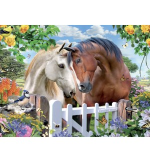 AN/Pair of horses nuzzling