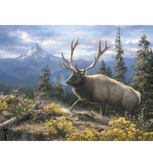 BD/Elk walking on mountain top