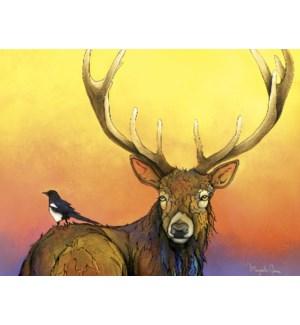 BD/Bird sitting on elk