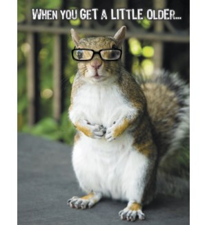 BD/Squirrel wearing glasses