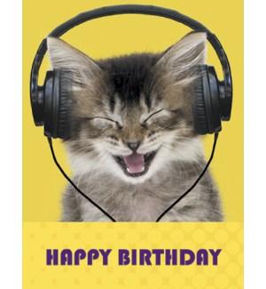 BD/Cat wearing headphones
