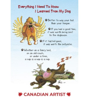 BD/Dog frantic tail wag