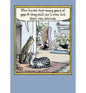BD/People & cats yoga class