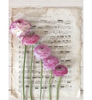 BL/Sheet music with flowers