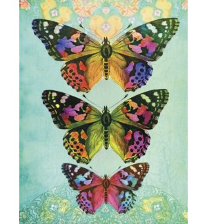 BL/Three colorful butterflies