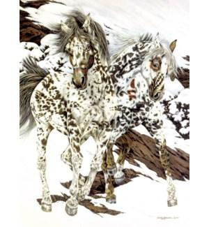 BL/Painted ponies coat