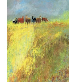 BL/Horses standing in pasture