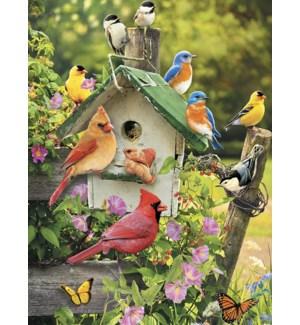 BL/Songbirds around birdhouse