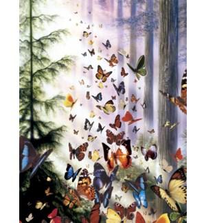BL/Butterflies in the woods