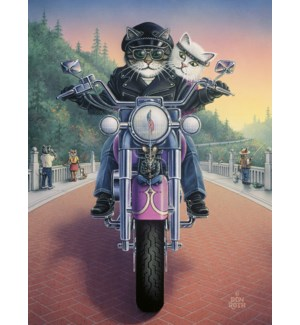 BL/Cats on motorcycle