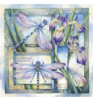 BL/Dragonflies and irises