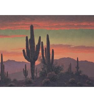 NOTECARD/Saguaros