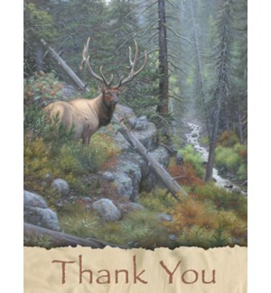 NOTECARD/Elk in forest