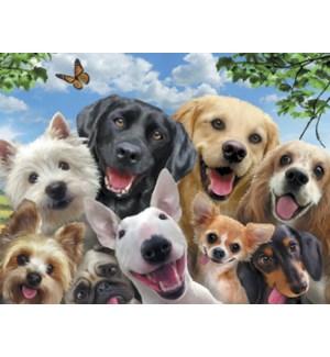 NOTECARD/Dogs selfie