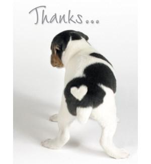 NOTECARD/Dog white heart