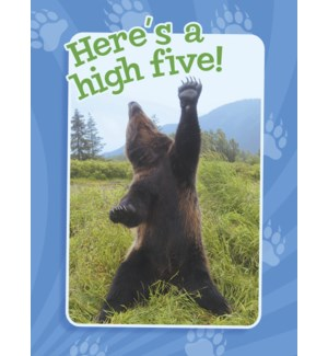 CO/Bear on hind legs, paw up
