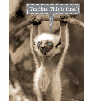 ENC/Lemur blue eyes hanging