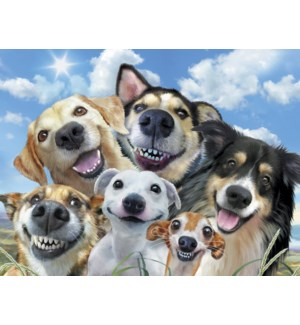 ENC/Dogs smiling for selfie