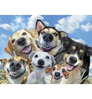 ED/Dogs smiling for selfie