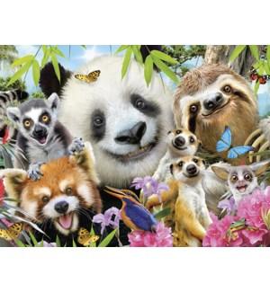 ED/Panda, sloth selfie