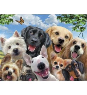 FR/Dogs in selfie pose